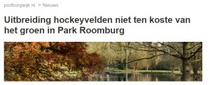 profburgwijk over raadscommissie